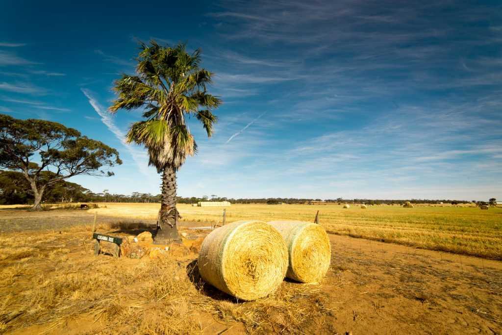 Australia: Un paraíso terrenal inolvidable